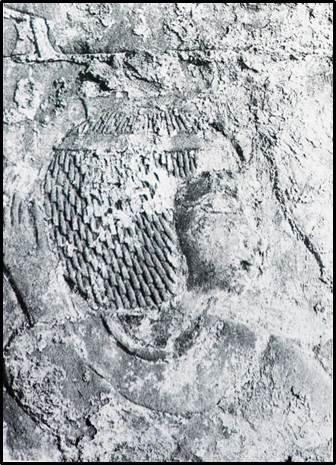 Рис. 7. Шепенупет I. Рельеф в святилище Осириса-хека-джет. Карнак (по: Myśliwiec K. Royal Portraiture of the Dynasties XXI–XXX. Mainz: Philipp von Zabern, 1988. Pl. XXVI c).