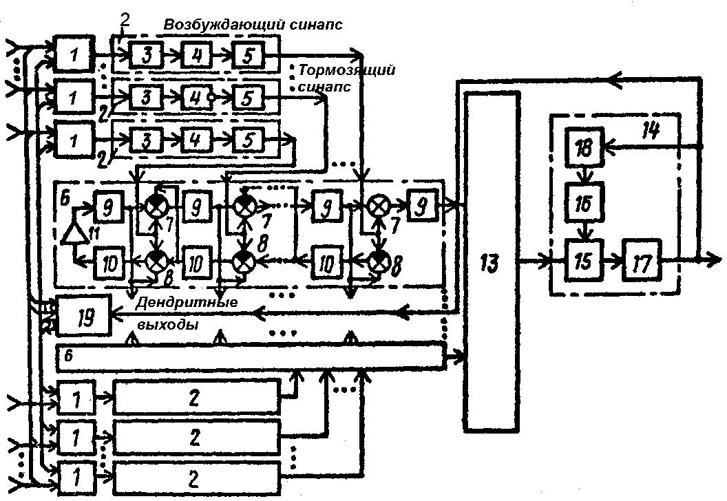 Рис. 4. Волновой нейропроцессор с локальными дендритными биопроцессорами по а. с. 1501101 [11].