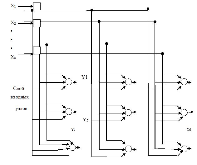Рис.1. Двумерная решетка нейронов