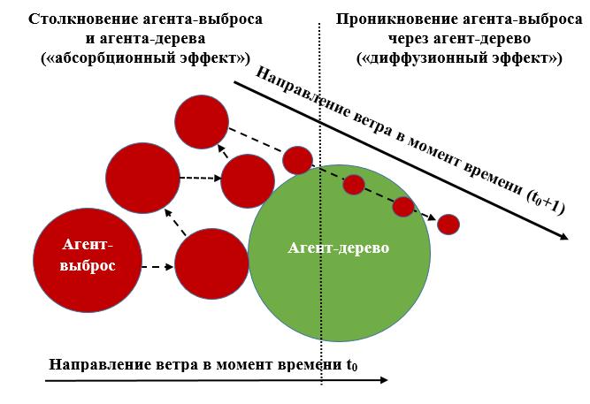 Рис. 1. Иллюстрация механизма абсорбционно-диффузионного взаимодействия агента-выброса и агента-дерева.