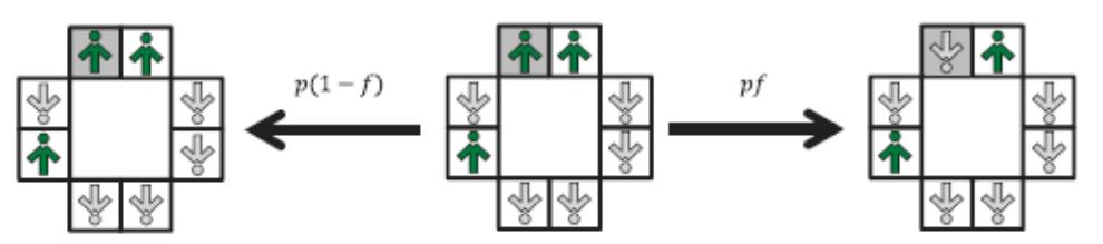Рис. 2. Независимость в двумерной модели: с вероятностью p случайным образом выбранный спинсон (находящийся в серой клетке) переходит в состояние Sk (t + dt) = -Sk (t) с вероятностью f (справа) или остается неизменным Sk (t + dt) = Sk (t) с вероятностью 1-f (слева), независимо от состояния (мнения) сетки 2×2.