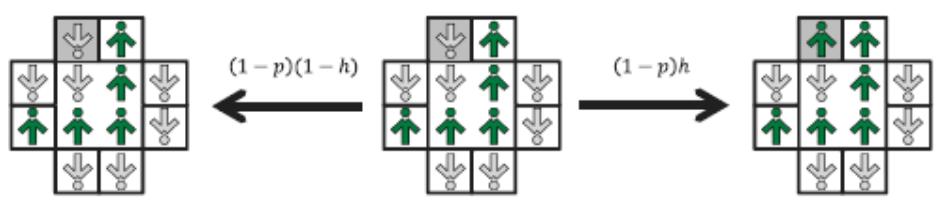 Рис. 3. Реклама в двумерной модели: с вероятностью (1 - p) случайным образом выбранный спинсон (находящийся в серой клетке) реагирует на рекламу, если сетка 2×2 не единодушна. С вероятностью h спинсон принимает (то есть покупает) рекламируемый продукт и с вероятностью (1 - h) он остается неизменным.