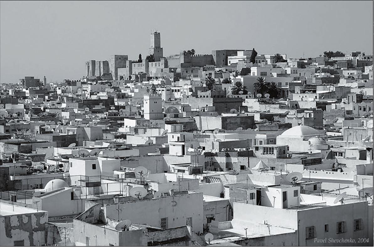 Рис. 3. Тунис. Фото П. Шевченко