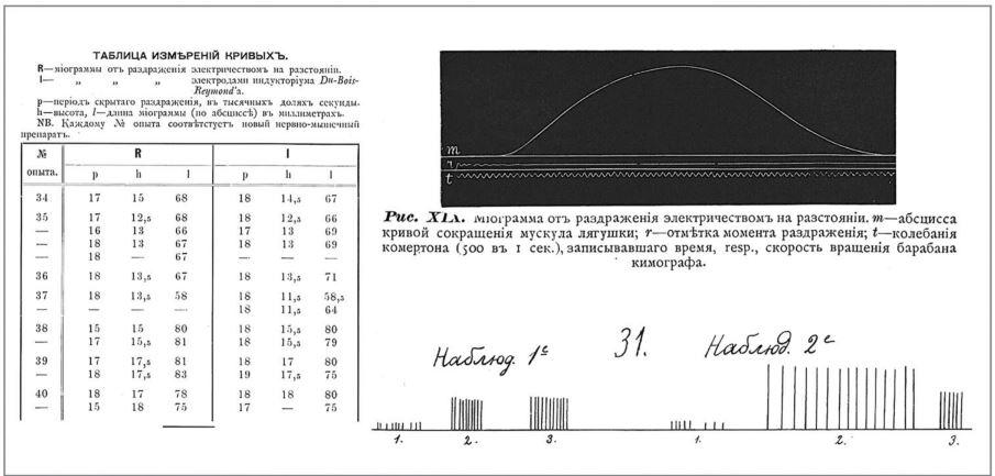 Рис. 4. Представление результатов исследования в диссертации С. И. Костина