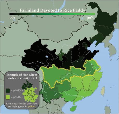 Рис. 2: Процент возделывания земель, отведенных под рисовые поля в 1996 году [Talhelmetal., 2014]